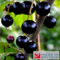 Blackcurrant Flavoured UK E Liquid