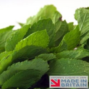 Menthol Flavour UK E Liquid