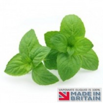 Nana Mint Flavour UK E Liquid
